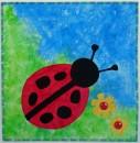 Ladybird, ladybug
