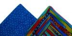 Double Dipping: Gosford Art Prize & SAQA Deux Exhibition
