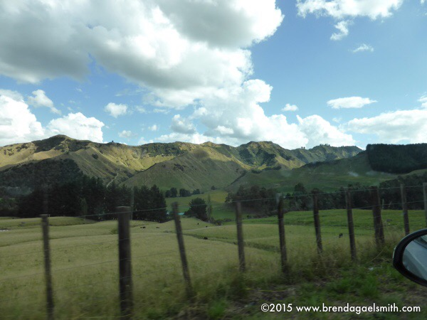 Whanganui Back Country