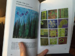 Colorplay book by the Twelve by Twelve International Art Quilt Challenge