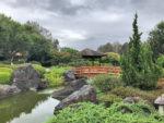 Exhibition Countdown: 2 days to go: Edogawa Gardens