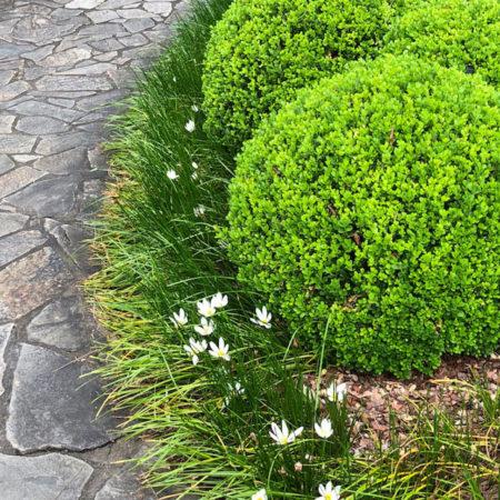 Edogawa Gardens
